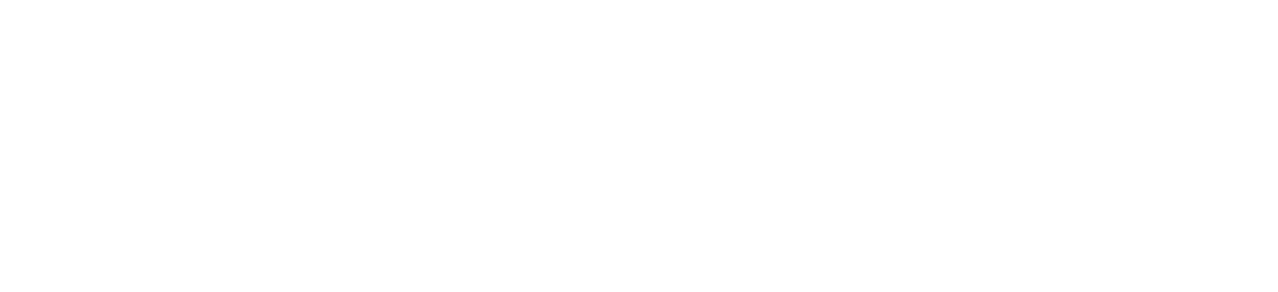 API Docs - CardFlight SDK Docs